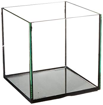 Deep Blue Rimless 60 Cube 24x24 ClearView Lids