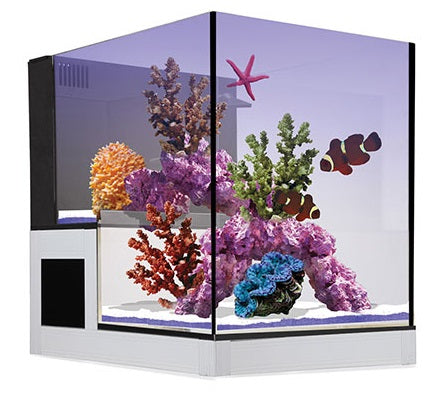 NUVO Concept Abyss Peninsula ClearView Lid