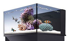 NUVO Fusion Lagoon 25 ClearView Lid