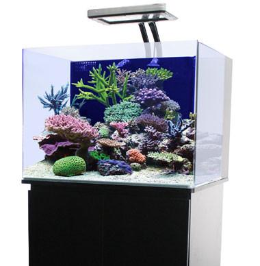 JBJ 30 Biotope ClearView Lids