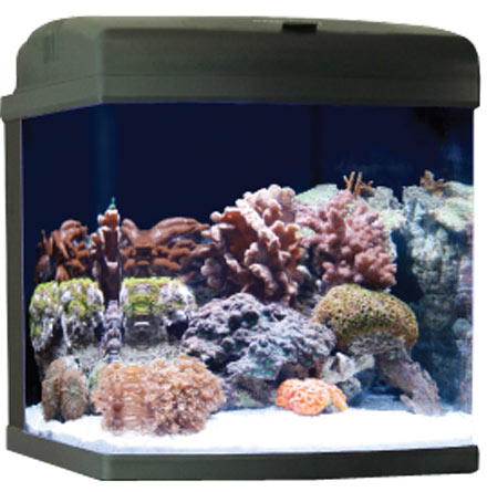 JBJ Biocube 29 ClearView Lids