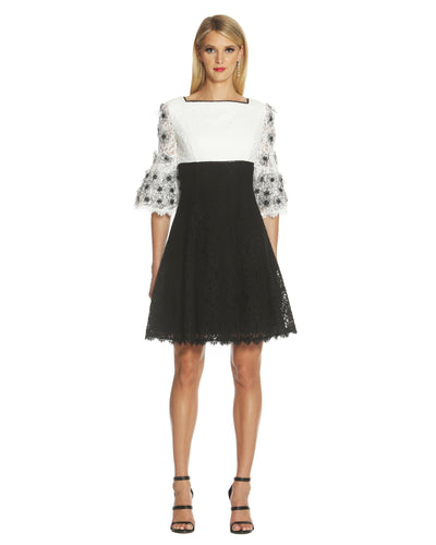 Colorblock Fit and Flare Lace Dress - 1
