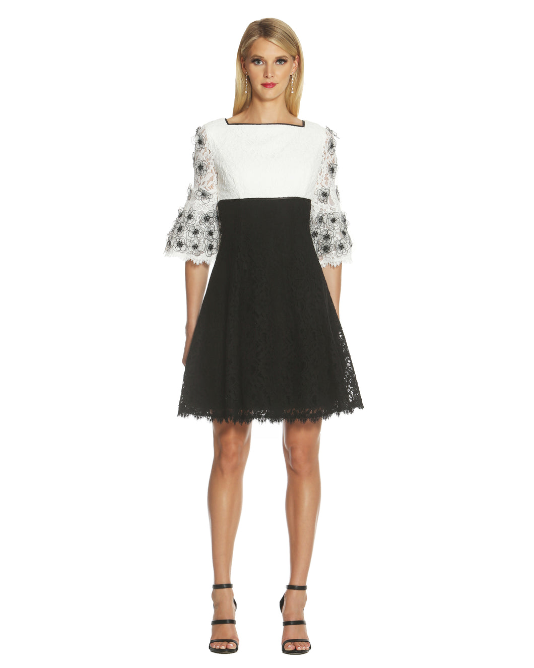 Colorblock Fit and Flare Lace Dress