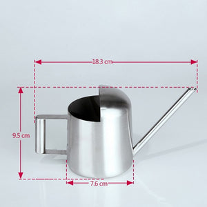 Silvery Ann Watering Can