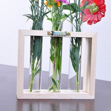 Load image into Gallery viewer, Wall Hanging Test Tube Propagation Station