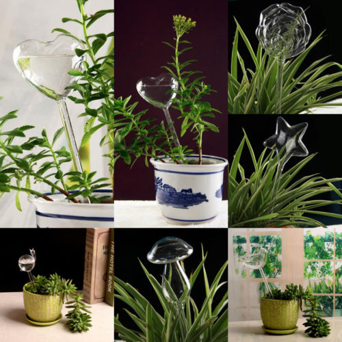 Glass Planter Waterers
