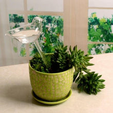 Load image into Gallery viewer, Glass Planter Waterers