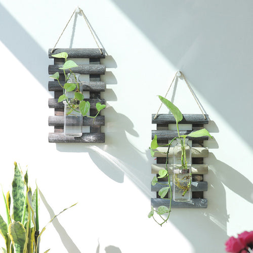 Wall Hanging Wood and Glass Propagation Vase