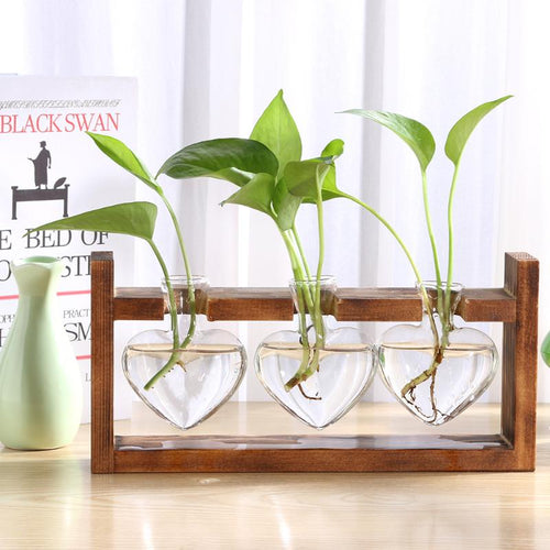 Glass and Wood Heart Rack Propagation Station