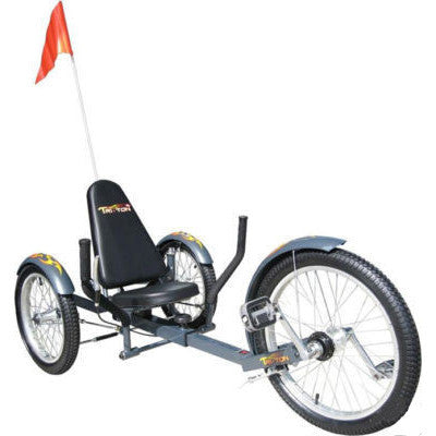 Low Rider Tricycle for Adults - JABETC