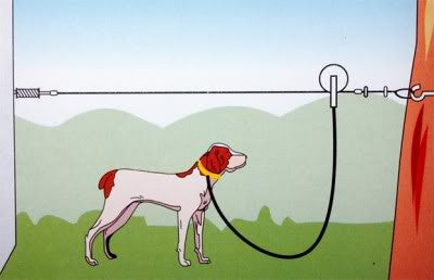 Outdoor 50 Foot Steel Metal Dog Tie Out Cable Line Leash Aerial Run Trolley