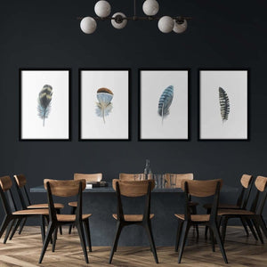 Feathers - Poster Set - Northshire Wall Art