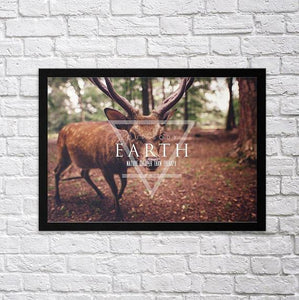Four Elements II - Poster Set - Northshire Wall Art