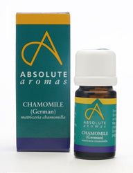 Chamomile German (Egypt)
