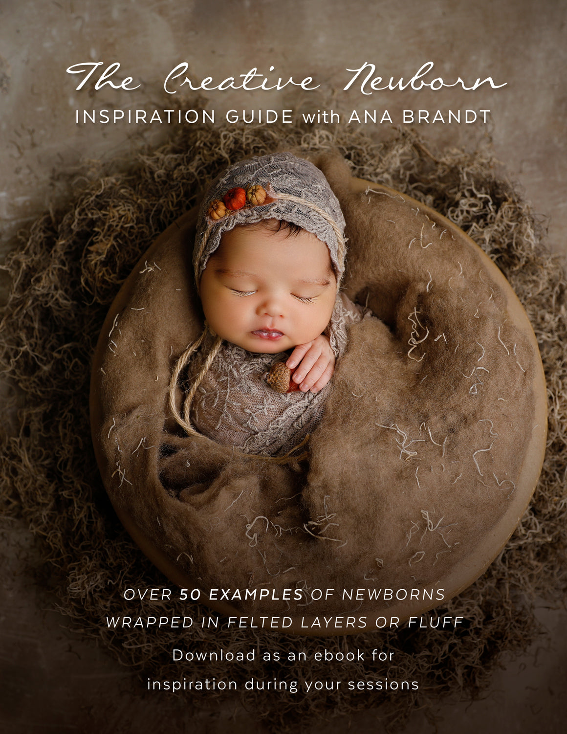 Felted Inspiration Guide with Ana Brandt