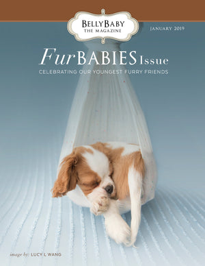 Fur Babies 2019 Magazine in Print
