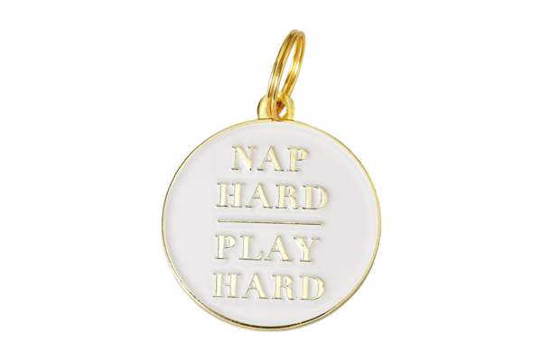 TWO TAILS PET COMPANY - NAP HARD PLAY HARD COLLAR IN BRASS