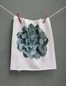 Green Succulent Placemat