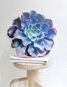 Lettuce Succulent Pillow - Neon Breakers Echeveria