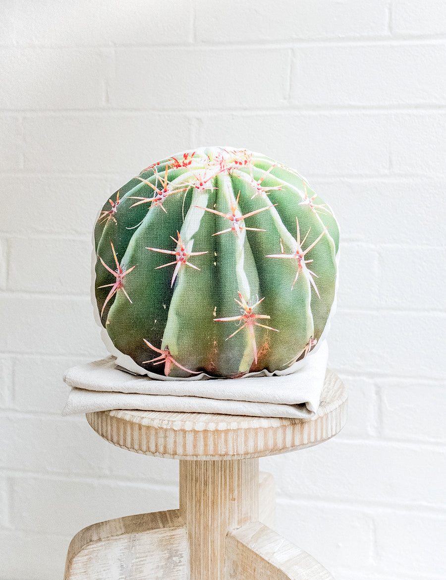 Barrel Cactus Pillow