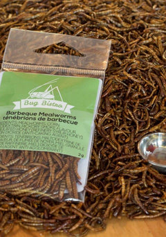 Barbeque Mealworms