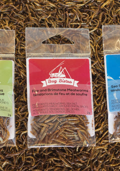 2g small bags, roasted seasoned crickets and mealworms