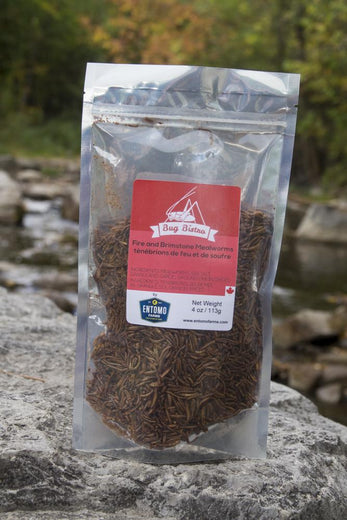 Fire & Brimstone Mealworms - Large Bag