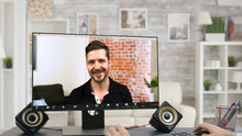 Load image into Gallery viewer, Brick Wall ZOOM Video Conference Background