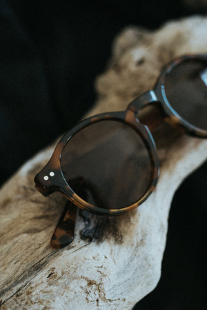 Men's sunglasses - Classic Tortoise
