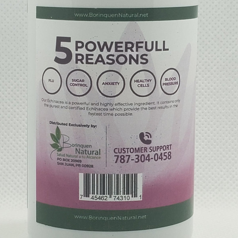 Echinacea - 800mg - Recommended Dose - 60 Capsules
