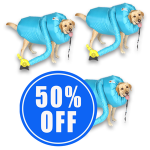 2 Dog Dryers + 1 50% OFF!