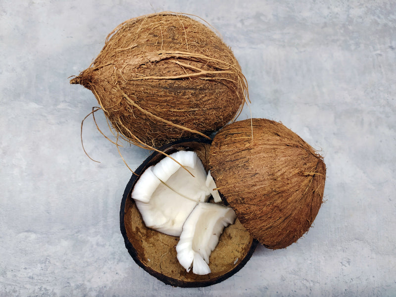 Coconut oil to repair damaged hair