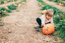 Load image into Gallery viewer, The Pumpkin Patch Babe | Lightroom Mobile Preset