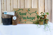 Load image into Gallery viewer, Home for the Holidays Plant Package