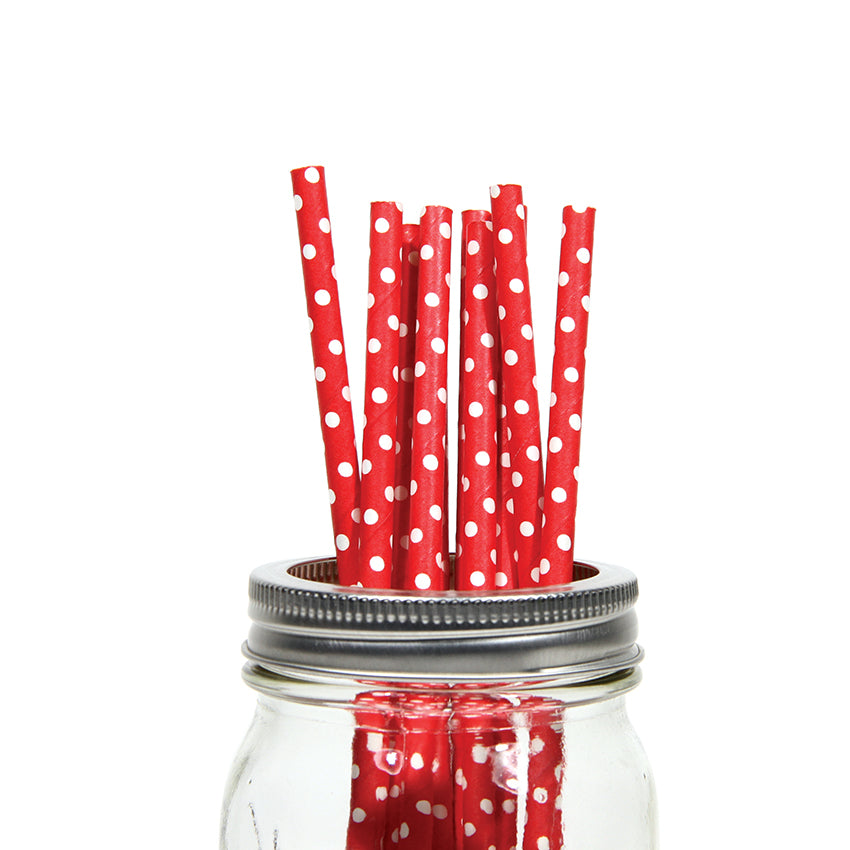 30 CT | Polka Dot Paper Straws
