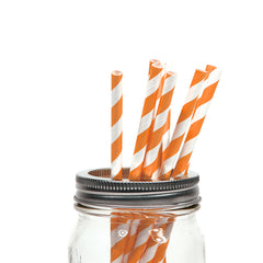 30 CT | Stripes Paper Straws