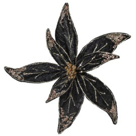 Black & Gold Poinsettia