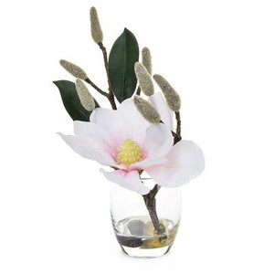 Magnolia in glass pot
