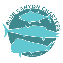 Blue Canyon Charters LLC