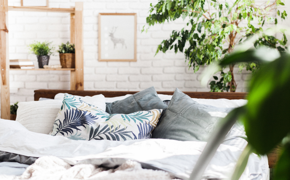 Turn Your Home into a Healthy, Serene Haven