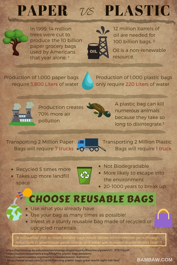 Paper vs Plastic Bag