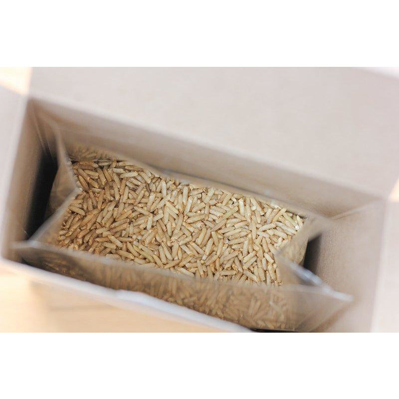 Sprouted Long Grain Brown Rice Organic Second Spring