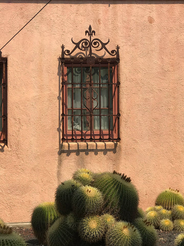 Lotusland_window_detail_architecture_stucco_spanish_coloniaironwork_cactus_terracotta