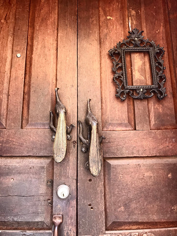 peacock_doorknocker_door_san miguel_mexico