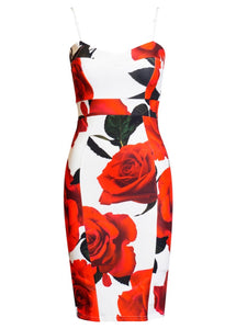 Amelia Floral Panel Bodycon Dress