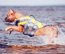 Large Dog Life Jacket / Life Vest - lovethepup
