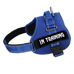 Dog Harness that can be personalized with a Leash for Small, Medium or Large Dog - lovethepup