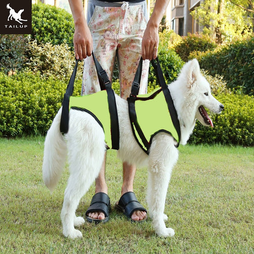 Elderly or Sick Dog Lift Harness K9 Canine Aid With Handle - lovethepup
