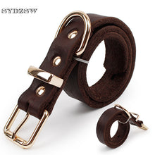Top Grade Leather Dog Collar with Alloy Buckle - lovethepup