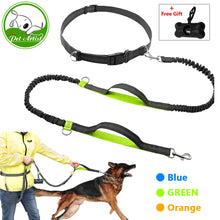 Retractable Hands Free Dog Leash for Running Dual Handle Bungee Leash Reflective For Up to 150 lbs Large Dogs Free Bag Dispenser - lovethepup